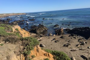 Photo taken at Cabrillo Hwy, San Simeon, CA 93452, USA with Apple iPhone 5s