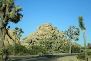 Photo taken at Quail Springs Spur, Joshua Tree, CA 92252, USA with Canon PowerShot S120