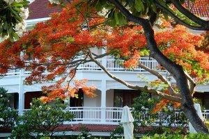 Soi Damnoen Kasam, Tambon Hua Hin, Amphoe Hua Hin, Chang Wat Prachuap Khiri Khan 77110, Thailand