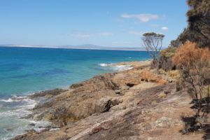 Granite Point Conservation Area, Richard Street, Bridport, Tasmania, Australia