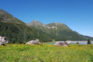 Kühtai 73, 6183 Kühtai, Austria