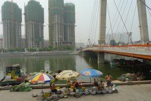 8 Wen Zhou Dao, Hexi Qu, Tianjin Shi, China, 300202
