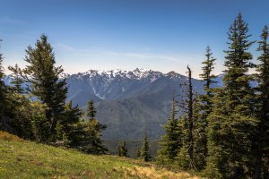 Olympic National Park, Pacific Northwest Trail, Port Angeles, WA 98363, USA