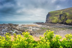Photo taken at South West Coast Path, Bude, Cornwall EX23 0LH, UK with SONY ILCE-7