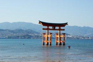 12-5 Miyajimachō, Hatsukaichi-shi, Hiroshima-ken 739-0588, Japan