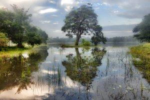 Puttalam-Anuradhapura-Trincomalee Highway, Sri Lanka