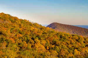 Photo taken at Shenandoah National Park, Skyline Drive, Front Royal, VA 22630, USA with Canon EOS REBEL T5i
