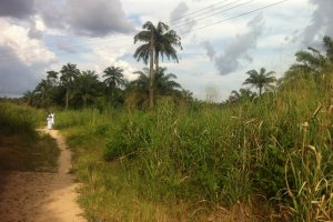 Oguta-Owerri Road, Oguta, Nigeria