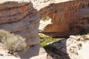 Natural Bridges Road, Lake Powell, UT 84533, USA