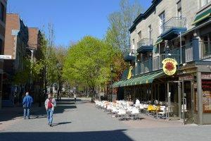 162-180 Rue Prince Arthur Est, Montréal, QC H2X 1B7, Canada