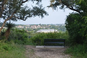 Photo taken at Tower Loop, San Antonio, TX 78247, USA with NIKON D5200