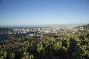 Table Mountain National Park, 209 Tafelberg Road, Table Mountain (Nature Reserve), Cape Town, South Africa