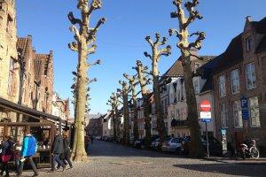 Pandreitje 17, 8000 Brugge, Belgium