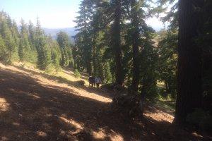 Pacific Crest Trail, California, USA