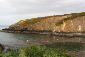 Pembrokeshire Coast National Park, Aberfforest, Newport, Pembrokeshire SA42 0UG, UK