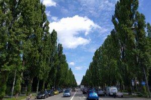 Leopoldstraße 3, 80802 München, Germany