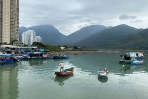 Po On Bridge, Ma Wan Chung, Tung Chung, Islands District, New Territories, Hong Kong, China