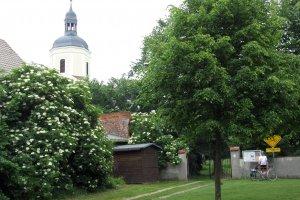 Lindenstraße 5, 04861 Torgau, Germany