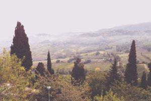 Via dei Filosofi, 53045 Montepulciano SI, Italy