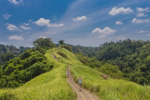 Jalan Raya Sanggingan No.88X, Ubud, Kabupaten Gianyar, Bali 80571, Indonesia