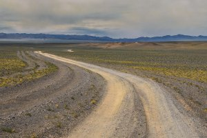 Sharga, Unnamed Road, Mongolia