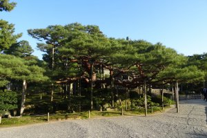 1-24 Kenrokumachi, Kanazawa-shi, Ishikawa-ken 920-0936, Japan
