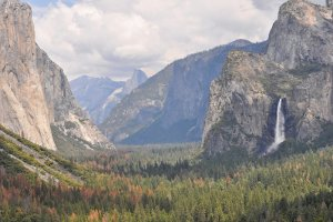 Wawona Rd, California 95389, USA