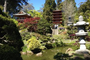 7 Hagiwara Tea Garden Drive, San Francisco, CA 94118, USA