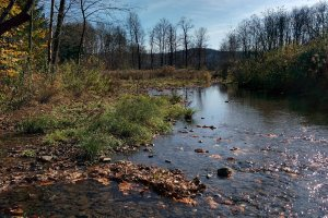 Dimmock Hollow Rd, Morris, NY 13808, USA
