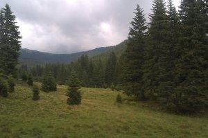 DJ714, Romania