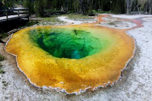Yellowstone National Park, Loop Trail, Yellowstone National Park, WY 82190, USA