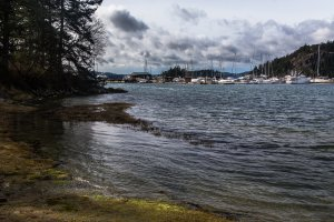 Deer Harbor Road, Eastsound, WA 98245, USA