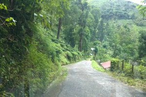 Hill Cart Rd, Cart Road, West Bengal 734223, India