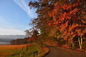 Cades Cove Loop Rd, Tallassee, TN 37878, USA