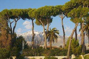 Traversa I Colagrosso, 22, 04023 Formia LT, Italy