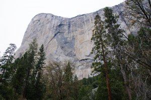 Northside Drive, YOSEMITE NATIONAL PARK, CA 95389, USA