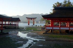1-5 Miyajimachō, Hatsukaichi-shi, Hiroshima-ken 739-0588, Japan