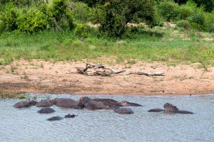 Gasanftombi Road, Kruger Park, South Africa