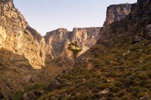 Pervolakia Road, Ierapetra 720 59, Greece