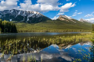 Photo taken at Jasper National Park, Icefields Parkway, Jasper, AB T0E 1E0, Canada with SONY NEX-6