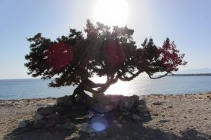 Naxos ke Mikres Kiklades 843 02, Greece