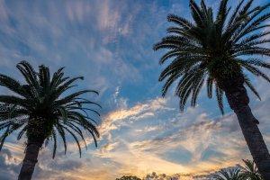 823 Bayshore Boulevard, Tampa, FL 33606, USA