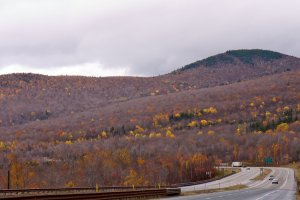 White Mountain National Forest, U.S. 3, Franconia, NH 03580, USA