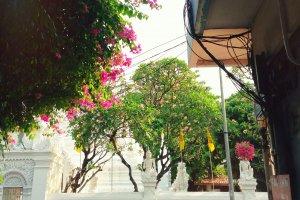 2/486 Thanon Si Ayutthaya, Khwaeng Thung Phaya Thai, Khet Ratchathewi, Krung Thep Maha Nakhon 10400, Thailand