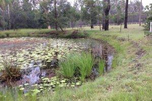 95-103 East St, Jimboomba QLD 4280, Australia