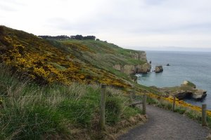 Photo taken at Tunnel Beach Track, Blackhead, Dunedin 9076, New Zealand with SONY DSC-HX90V