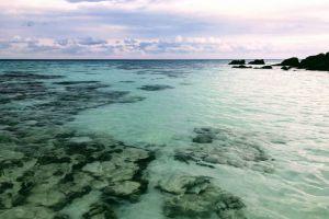 Serendipity Resort, Kathalee Resort, Pattaya Beach, Satun Province, 0000, Thailand