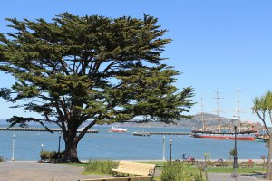 Photo taken at Ghirardelli Square, 900-904 Beach Street, San Francisco, CA 94109, USA with Canon EOS 1100D