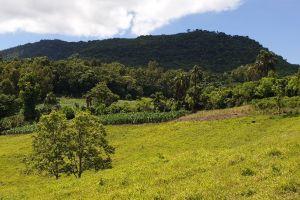 Agudo, Região Geográfica Imediata de Santa Maria, Região Geográfica Intermediária de Santa Maria, Rio Grande do Sul, South Region, 96540-000, Brazil