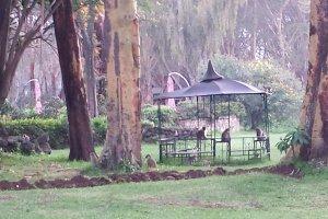 Moi South Lake Road, Kenya